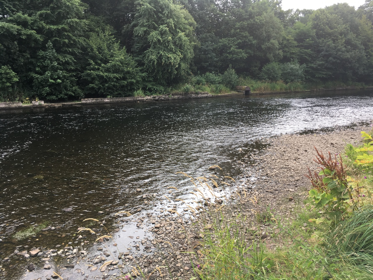The River Leven showing its Bones