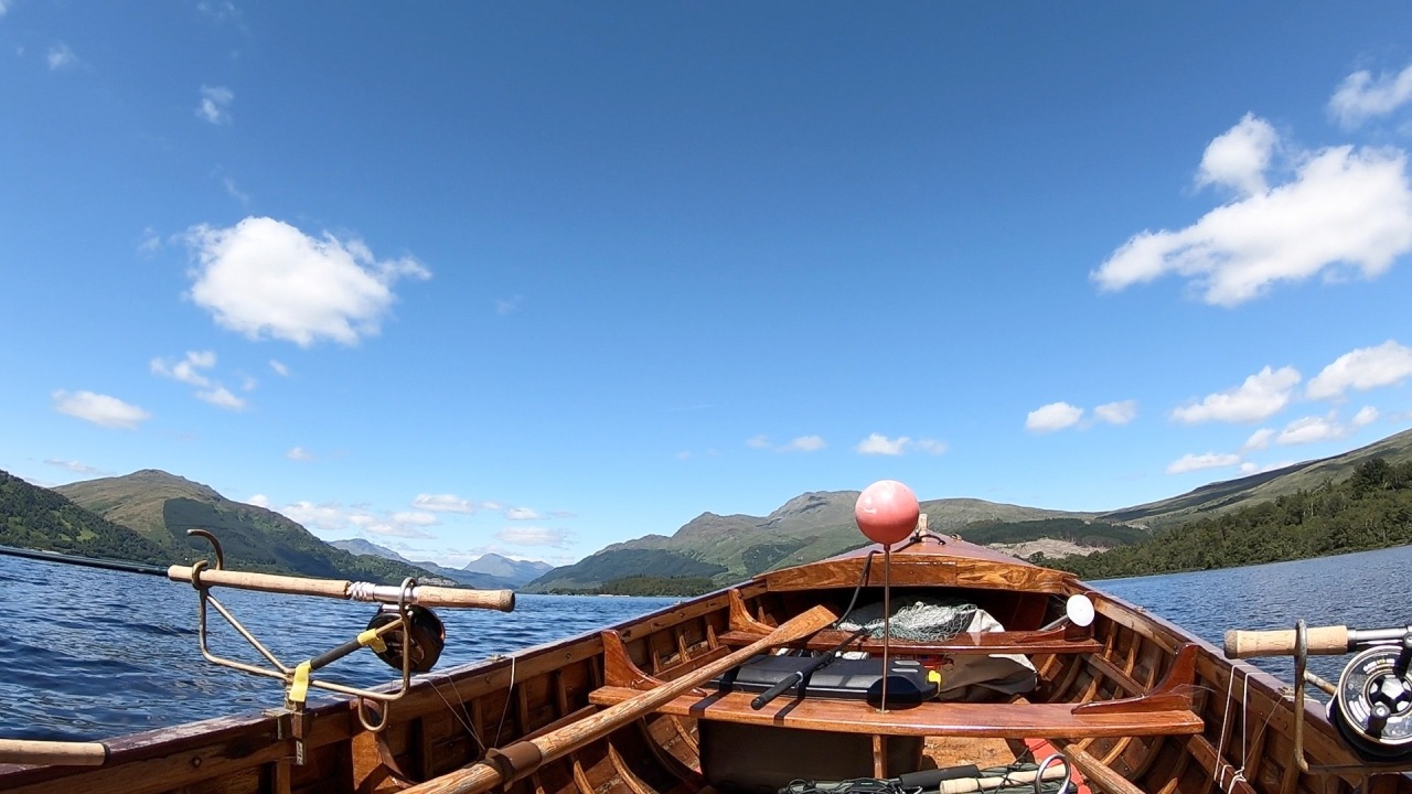 A very Hot July Day on Loch Lomond