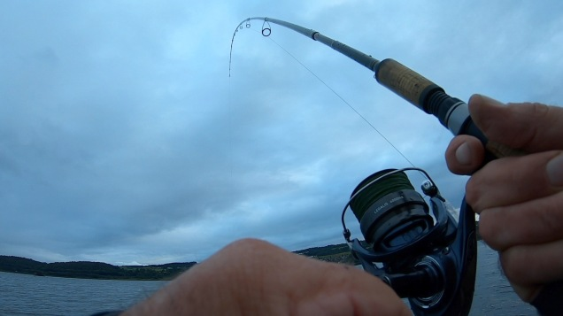 Clyde Estuary 130818a