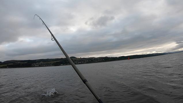 Clyde Estuary 130818b