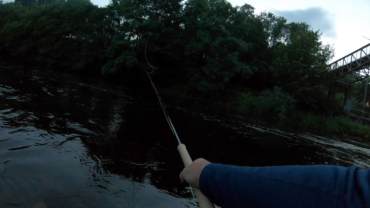 A few hours on The Leven at dusk