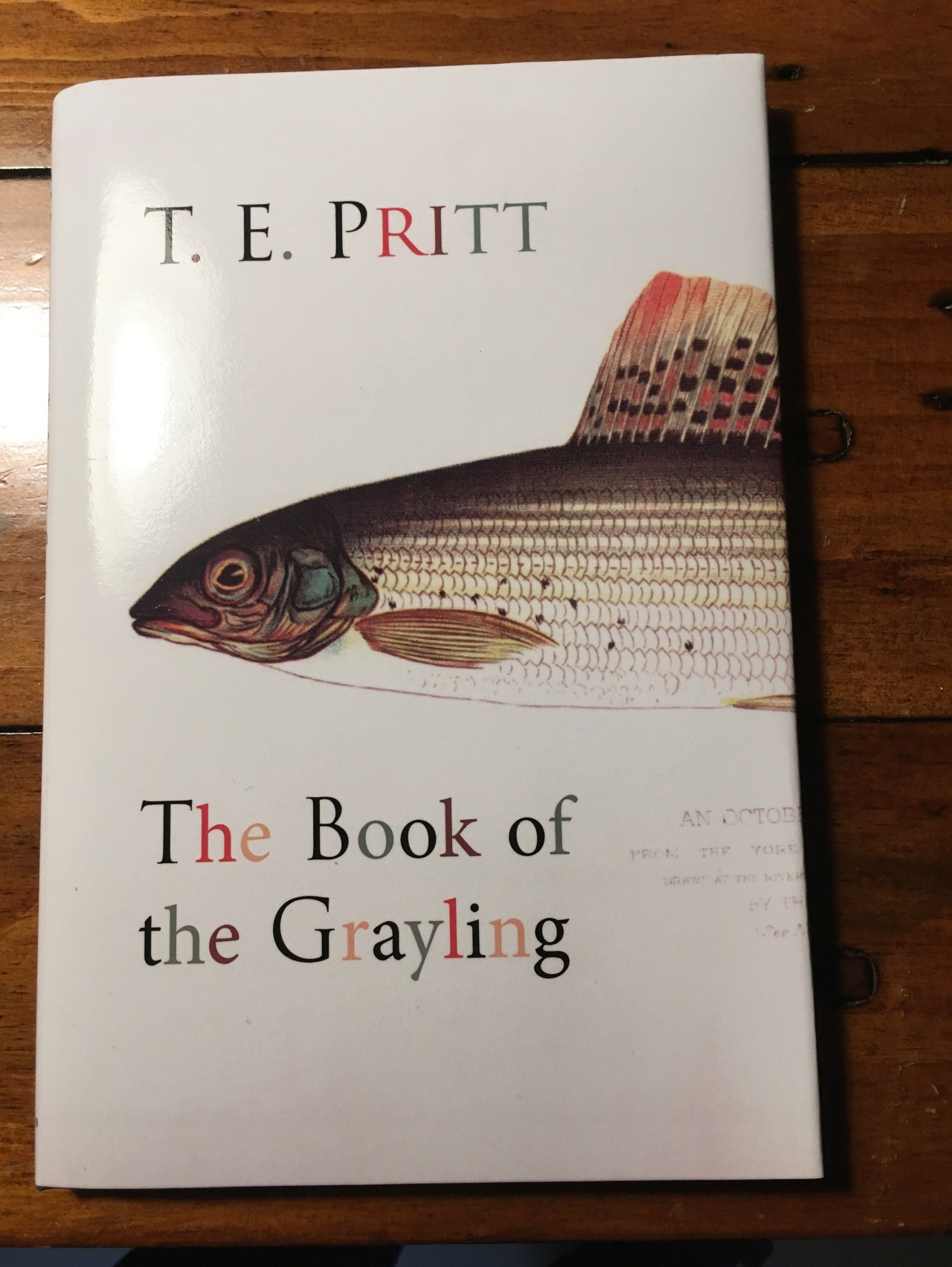 Another Game Fish – The Grayling
