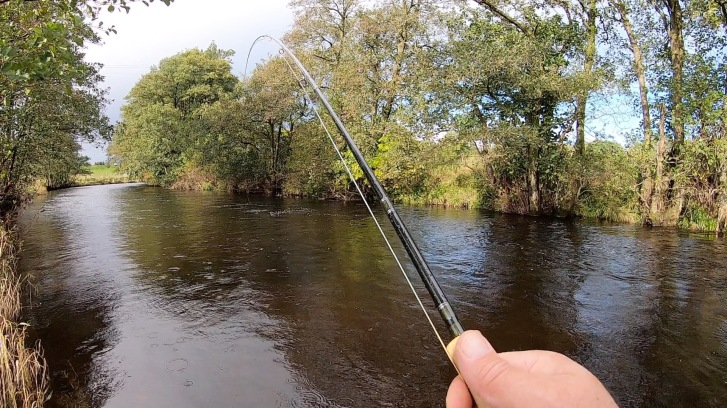 River Endrick 121019a