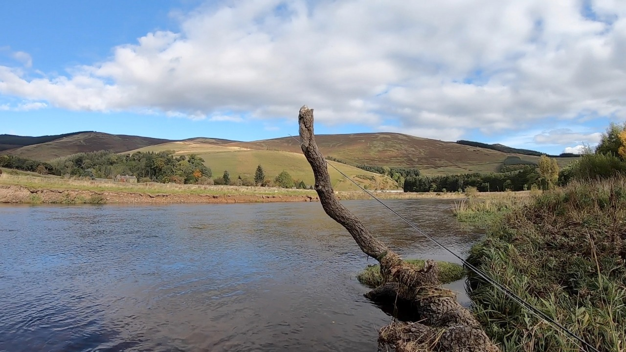 Another first – Cardrona on the RiverTweed